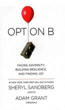 کتاب راه حل جایگزین Option B