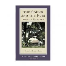 کتاب رمان انگلیسی خشم و هیاهو  The Sound and the Fury-Norton Critical